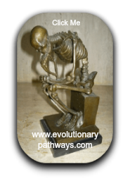 The Thinking Man By Rodin